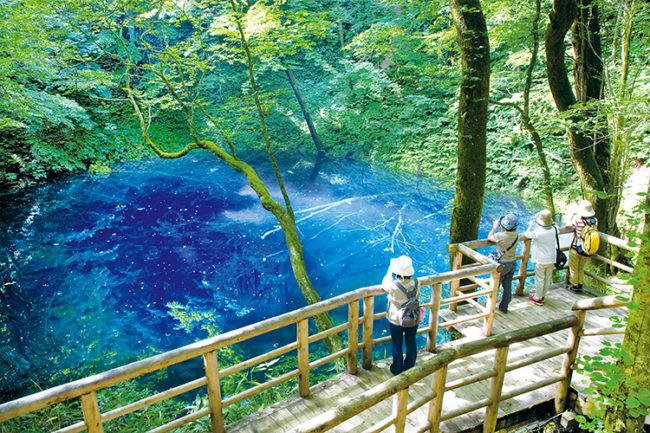 白神山創造的奇蹟藍色 用絕妙的風景治愈自己