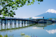 電視上的話題!  在日本使用青森Hiba最長的木橋是什麼?