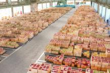 毫無疑問,您會為蘋果盒子的數量所困擾 弘前蔬菜市場