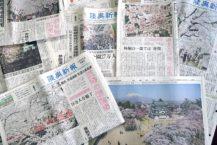 弘前的當地報紙沒有報導公園裡的櫻花 給公眾的最大訊息