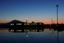 青森縣的稻田景觀已經成為網上的熱門話題 火車反映在夕陽和水